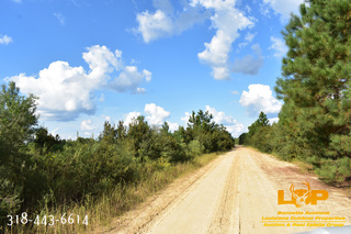 Land For Sale at Auction in Kiln, MS