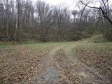 Unique Property - 12 Wooded Acres EDINBURG, VA