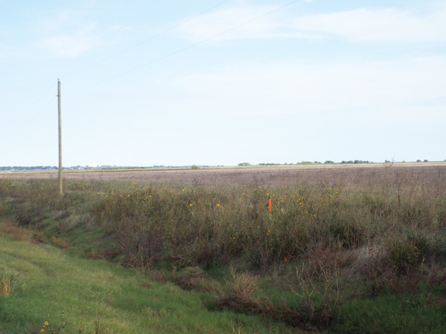 11/29 160± Acres • Surface & Minerals • Cultivation • Hwy 70 Access