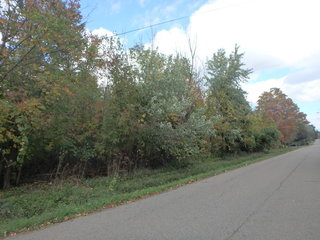 Real Estate AUCTION - Vacant Residential Land in Hamburg, NY