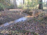 5.33 ACRE TRACT IN MADISON COUNTY