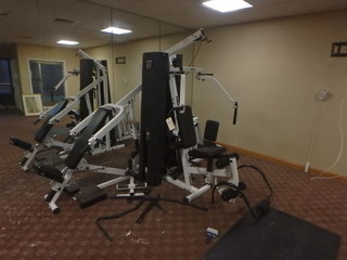 Online AUCTION - Parabody Serious Steel 425 Home Gym
