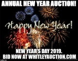 1-1-2019 New Year Day Annual New Year Auction