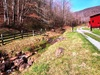 Lower Kirtner Branch on a early spring day: