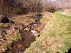 Lower Kirtner Branch on an early spring day: