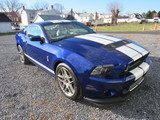 Mid-Winter Auction - Mustangs