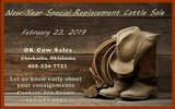 New Year Special Replacement Cattle Sale