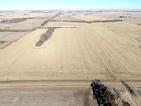 SAUNDERS COUNTY FARMLAND/ACREAGE AUCTION