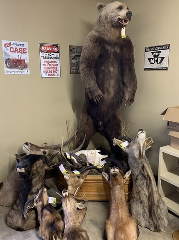 Firearms, Taxidermy & Ammo - Lambrecht Auction, Inc
