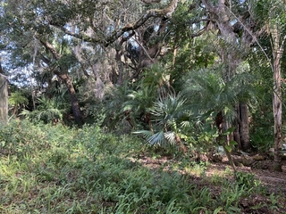 On 1/2 acre lot with beautiful tropical landscape and secluded backyard that backs up to Roebuck Creek.