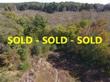 Benton Co. MS 35 +/- ac. with a Pond - Bordered by National Forest