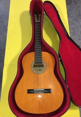 Lotus Acoustic Guitar Model: LC30