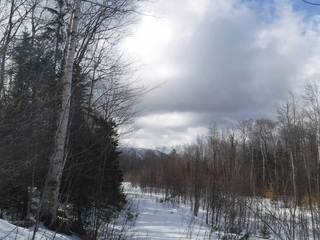 37± Acres in Andover