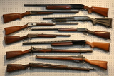 Hand & Long Gun Auction Ending 4/23