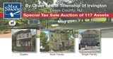 Special Tax Sale Auction