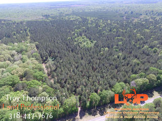60 +/- Acres in Caldwell Parish