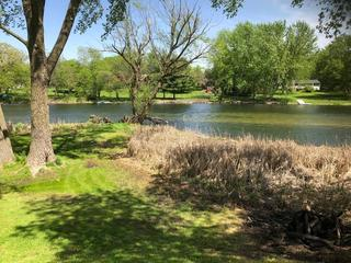Riverfront Lot, Stoughton, Dane County For Sale