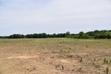 Farm Land - 106+/- Acres