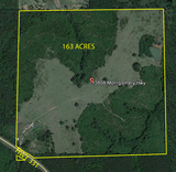 163 ACRES CRENSHAW COUNTY, AL