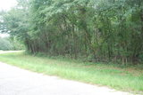 LEE COUNTY, GA -ON LINE ONLY- PROPERTY # 6