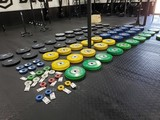 ROGUE GYM EQUIPMENT AUCTION