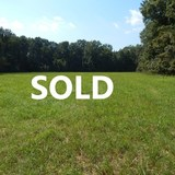 Tate County - 50 +/- ac. Woods and Pasture - 6 mi. West of Senatobia on Highway 4