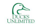 Duck's Unlimited Auction