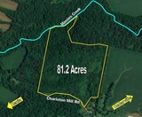 BEAUTIFUL WOODED LAND AUCTION