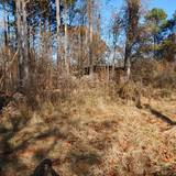 Panola County - 2.7 ac. Wooded Home Site