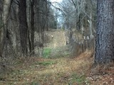 Tallahatchie County - 80 ac. of Recreation/Hunting Land located minutes from Grenada - Grenada Lake and I-55