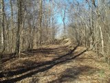 Panola County - 280 +/- ac. Deer/Turkey Hunting Land on the Bluff overlooking the Delta
