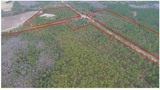 Lowndes County Estate Land Auction