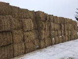 HAY & FIREWOOD AUCTION