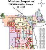 Palm Bay Lot Auction