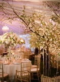 Party, Event, & Designer Decor
