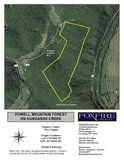 FOR SALE Powell Mountain Forest in Talcott WV