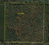 ONLINE ONLY AUCTION 40 ACRES POLK COUNTY, GA