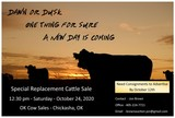 Autumn Special Replacement Cattle Sale