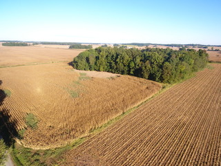 POSEY COUNTY FARM AND WOODED ACREAGE
