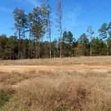 Grenada Co. 20.20 ac. Home Site - Woods - Open Area - Pond
