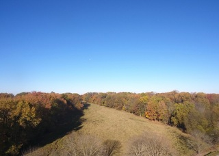 OUTSTANDING POSEY COUNTY LAND AUCTION