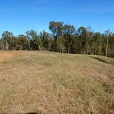 Grenada Co. - 78.79 ac. Home Site/Hunting Land