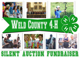 Weld County 4-H Online Auction