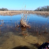 Quitman Co. - 40 ac. Duck and Deer Hunting Land