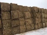 HAY AND FIREWOOD AUCTION