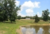 Bank Owned Home & 20+/- Acres