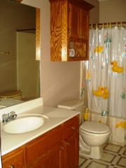 Bathroom: This is the bathroom located off of the hallway.