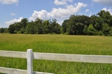 25+ Acres in Alachua County