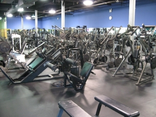 GYM EQUIPMENT - 150+ MACHINES