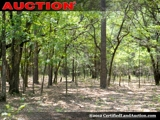Timber Land For Sale in GA